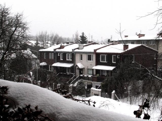 Zima 2009 w Starej Miłosnej