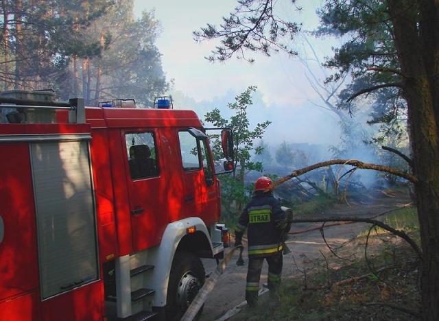 Pożar drewnianego domku w lesie