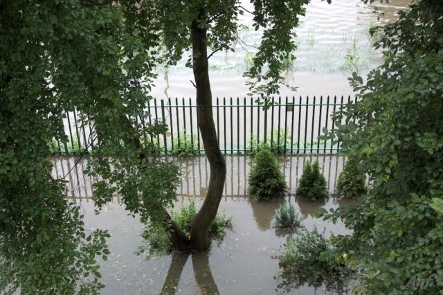 Powódź w Starej Mołosnej 2011