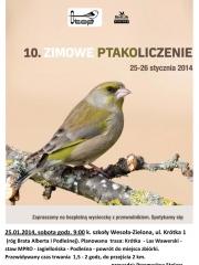 10. Zimowe Ptakoliczenie
